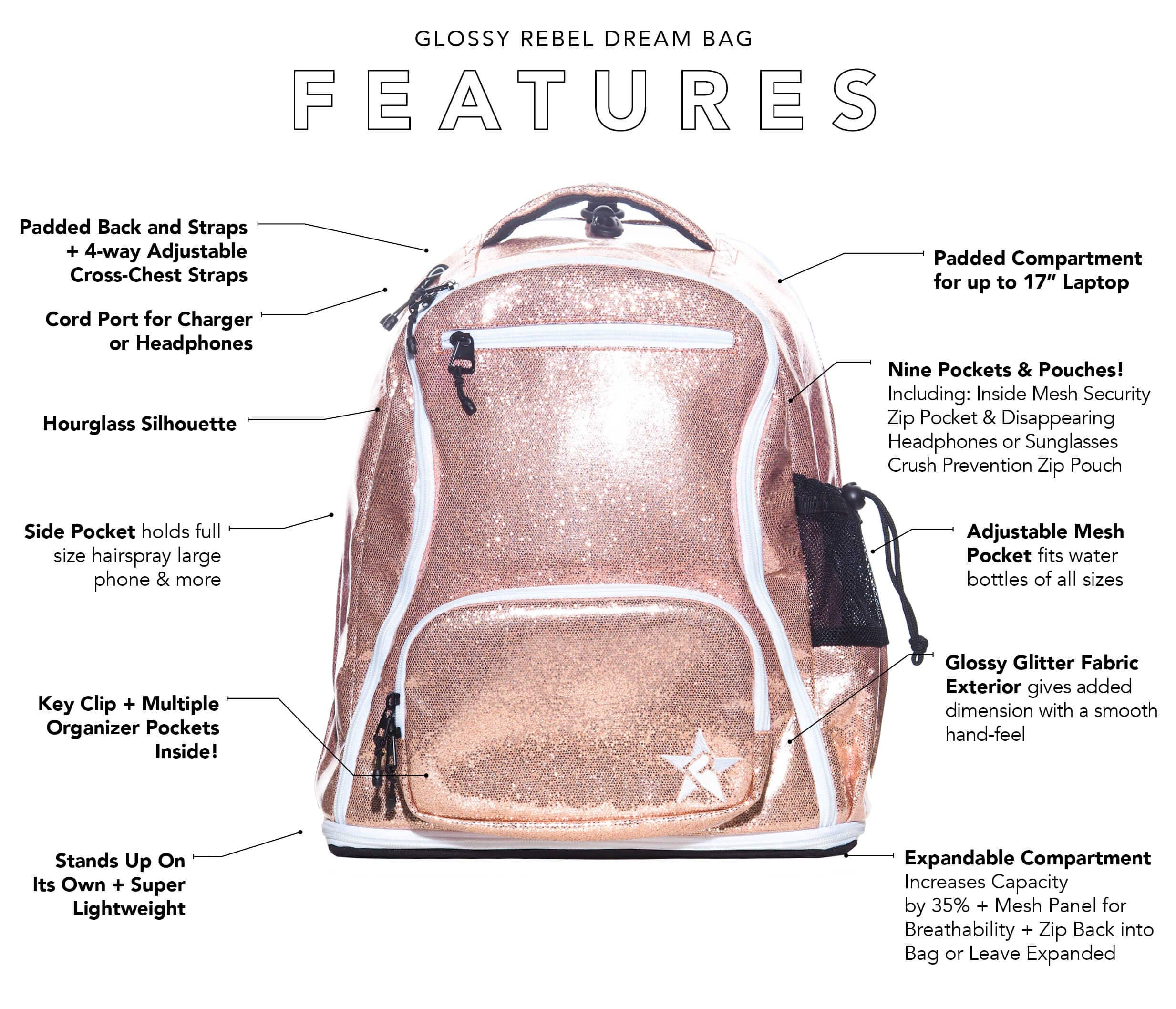 shiny silver backpack main features